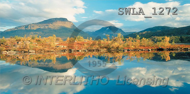Carl, LANDSCAPES, panoramic, photos(SWLA1272,#L#)