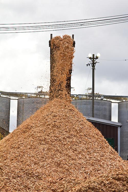 Washington Coast, Hoquiam, Port of Hoquiam, pulp wood for export, Grays Harbor County, Southwest Washington, Washington State, Pacific Northwest, USA,