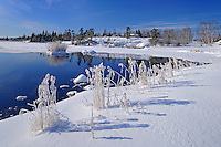 Hoarfrost at Jessica Lake<br /> Whiteshell Provincial Park<br /> Manitoba<br /> Canada