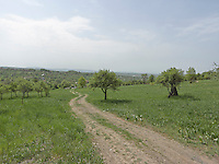 VY_LOCATION_75002