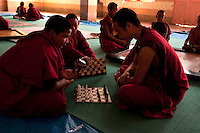 Young Buddhist Lama students playign chess in their recreation time, Sikkim, India
