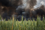 Tyres burn behind a wheat field, in an uncontrolled dump near the town of Sesena, after a fire broke out early on May 13, 2016. A huge waste ground near Madrid where millions of tyres have been dumped was on fire today, releasing a thick black cloud of toxic fumes that officials worry could harm residents nearby.  © Pedro ARMESTRE