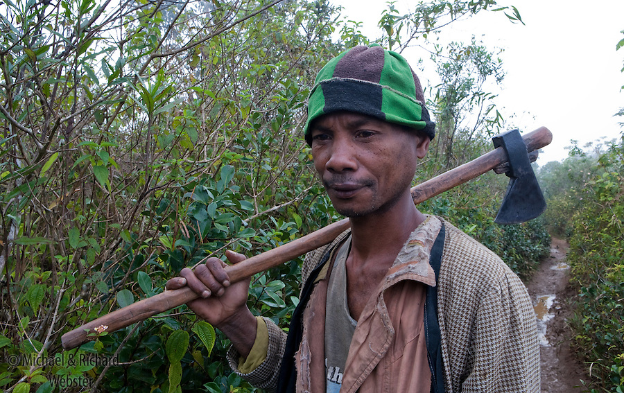 A man on his way to the forest. The only source of energy in most malagasy villiges is charcoal. The source for this comes from timber and this turn, deforestation.