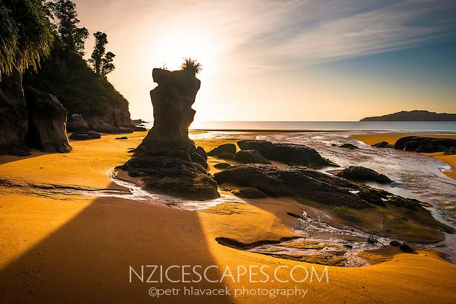 Sunrise on golden beach in Totaranui, Abel Tasman National Park, Golden Bay, Nelson Region, New Zealand