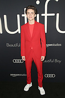 BEVERLY HILLS, CA - OCTOBER 8: Timothée Chalamet at the Los Angeles Premiere of Beautiful Boy at the Samuel Goldwyn Theater in Beverly Hills, California on October 8, 2018. <br /> CAP/MPIFS<br /> ©MPIFS/Capital Pictures