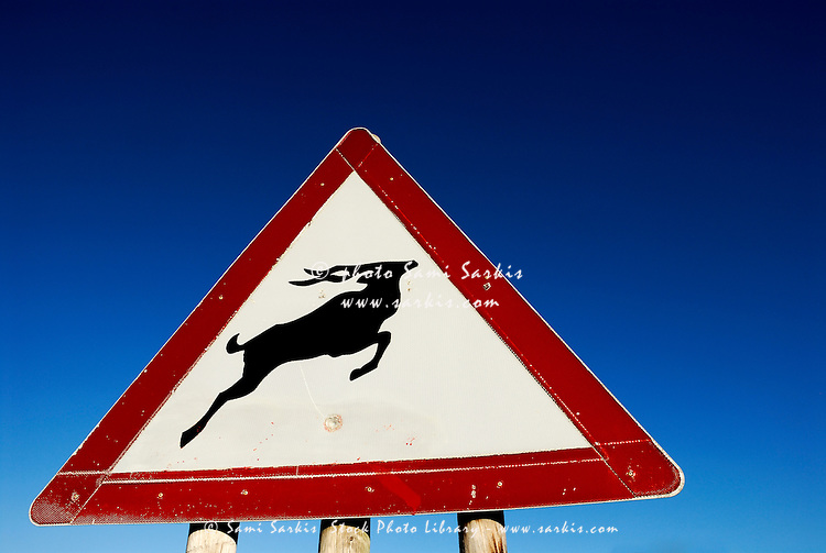 Antelope road sign, South Western Cape, South Africa
