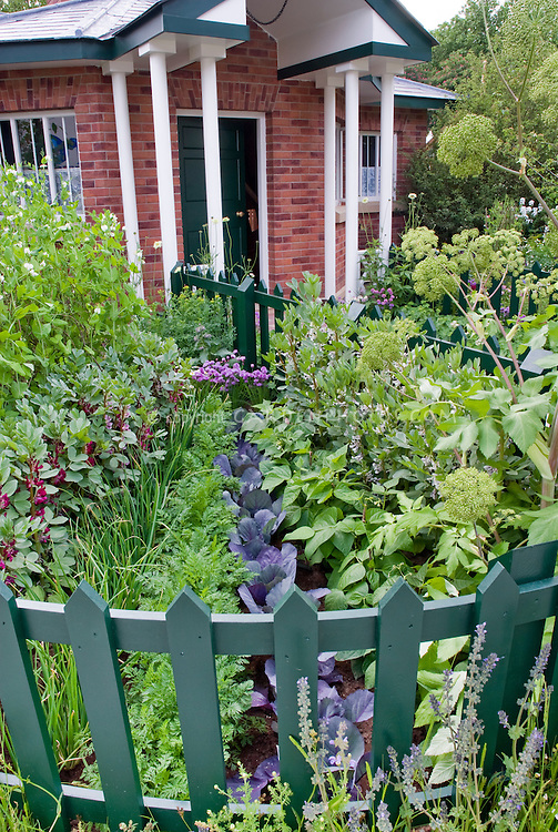 Front entry garden of brick house with green picket curving fence, vegetables cabbages, carrots, beans, herb angelica flowers, for unusual and pretty curb appeal at home entrance edible landscaping