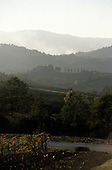 Umbria, Italy. Typical Umbrian agricultural hilly scenery.