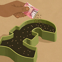 Hand planting seeds from pound seed packet ExclusiveImage