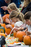 Pumpkin carving at the Martha's Vineyard Harvest fest, West Tisbury, Massachusetts, USA