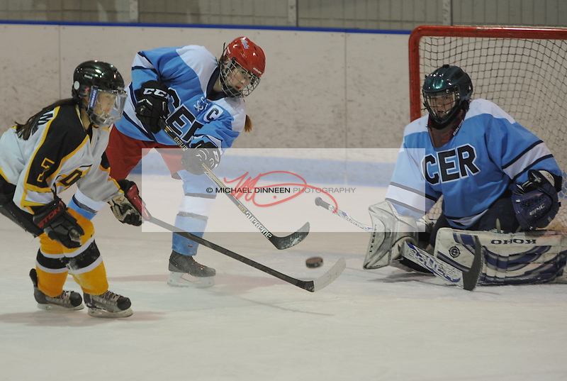 Chugiak Eagle River captain Jade Pandres clears the puck in front of goalie Shelbey Skandovitch and Dimond-West's Tami Saenram at Ben Boeke Arena Monday, January 25th, 2016.  Photo for the Star by Michael Dinneen