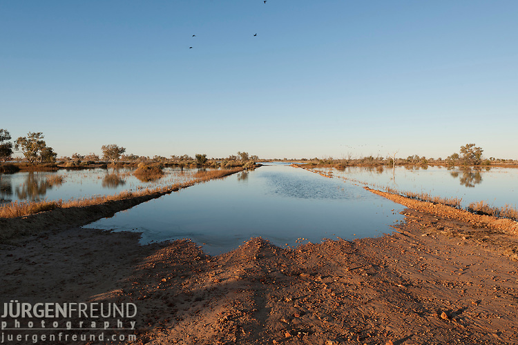 Closed Cooper Creek Birdsville Track with water reaching more than 5km wide. The famous and one time feared Birdsville Track finally cut after twenty long and dry years. The waters of the Cooper Creek on its long journey from Queensland to Lake Eyre now flow across it.