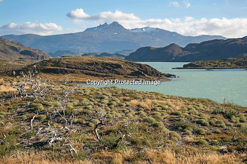 View of Lago Nordernskjöld Lake in Torres del Paine National Park in Patagonia Chile