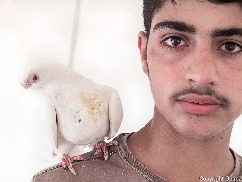 I am Obada. I raise pigeons because I like to. <br /> I took a picture with one of them