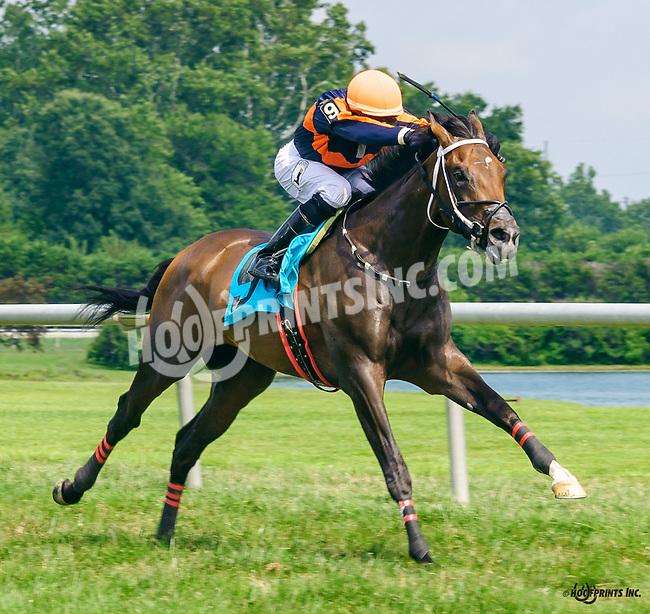 Monsoon K S A winning at Delaware Park on 8/6/16