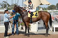 CERRITOS, CA  JULY 24: #4 Marley's Freedom, ridden by Drayden Van Dyke, in the winners circle after winning the Great Lady M Stakes (Grade ll), on July 7, 2018, at Los Alamitos Race Course in Cerritos, CA. (Photo by Casey Phillips/Eclipse Sportswire/Getty Images)
