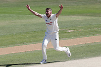 Matt Milnes celebrates taking the wicket of Alastair Cook during Essex CCC vs Nottinghamshire CCC, Specsavers County Championship Division 1 Cricket at The Cloudfm County Ground on 22nd June 2018