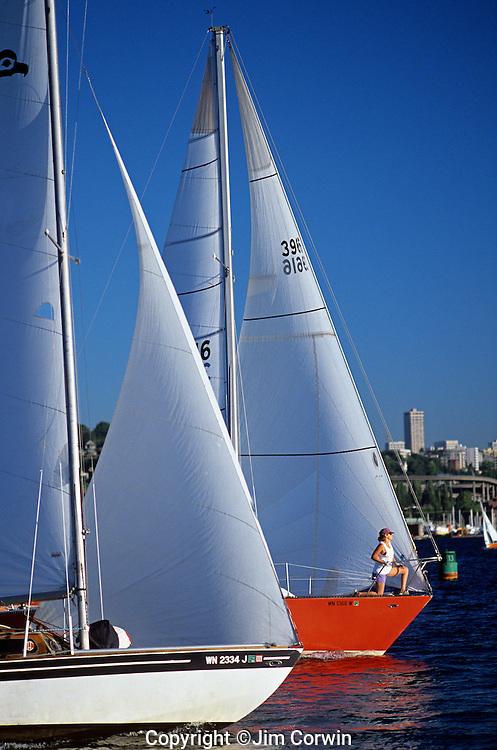 Sailboats on Lake Union racing to the finish line, Seattle, Washington State USA