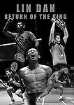 Lin Dan - Return of the King