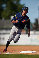 State College Spikes second baseman Josh Swirchak (26) running the bases during a game against the Batavia Muckdogs August 23, 2015 at Dwyer Stadium in Batavia, New York.  State College defeated Batavia 8-2.  (Mike Janes/Four Seam Images)