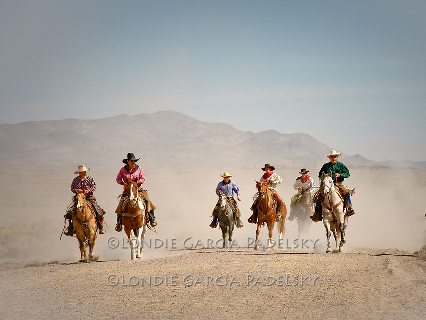 Cowboys riding horses at a dusty cattle drive in the Owens Valley, Eastern Sierra, California