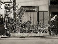 Garden in Ota, Japan 2014.