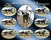 Sierra Bella 7 wins in 2005 meet