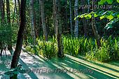 Marek, LANDSCAPES, LANDSCHAFTEN, PAISAJES, photos+++++,PLMP01013W,#L#, EVERYDAY