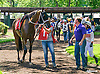 Marriage Material before The International Ladies FEGENTRI  race at Delaware Park on 6/13/16