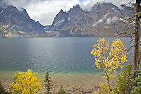Jenny Lake, Grand Tetons, Fall Colors