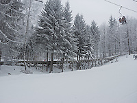 FOREST_LOCATION_90165