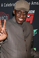 LOS ANGELES - JAN 30:  Bill Duke at the Excelsior! A Celebration of Stan Lee at the TCL Chinese Theater IMAX on January 30, 2019 in Los Angeles, CA
