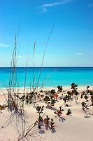 Remote beach on Highbourne Cay, Exuma Islands, Bahamas
