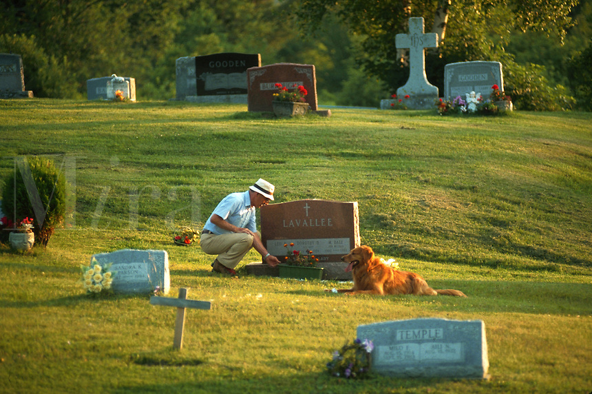 Man placing flowers at his wife's grave with his dog keeping him company.