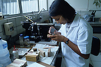 Laboratory worker checking quality of a wood sample