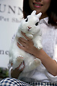 "Tokyo, Japan - A member of staff holds a rabbit at the Ms. Bunny pet shop. Ms.Bunny, a pet shop and cafe based in Roppongi, provides its customers some healing from the stress of living in a huge metropolis like Tokyo by interacting with furry pets while having a cup of tea. The store, which opened in 2011, (the year of the rabbit according to the Chinese Zodiac) together with several other bunny-related cafes and shops around Tokyo, allows customers to play with rabbits and also sells them and offers services such as boarding and grooming. The most popular service seems to be the ""Usagi Kimochi Cafe"", or ""Rabbit Feelings Cafe"", which allows anyone to spend some time with a furry rabbit while having a drink. The fee is a reasonable 750 JPY per 30 minutes, with the possibility to extend the experience by 30 minutes for an additional fee. A 3,000 JPY per hour special ""Usanpo"", or ""walk with the bunny"", service is also available. According to shop staff, customers, of which 70 percent seem to be women, can choose any of the 20 rabbits available in the store to play with or to buy. (Photo by Rodrigo Reyes Marin/AFLO)"
