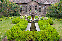 Water garden feature with boxwood Buxus, fountain, lawn grass, evergreen trees and shrubs, wooden house and container garden, Colocasia