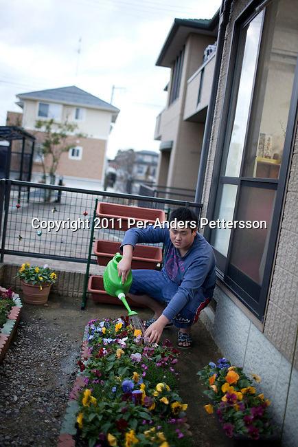 ISHIONAMAKI, JAPAN - DECEMBER 5: Student Atsushi Murata, age 17, tends to flowers in the temporary housing block where he lives with his grandmother, mother and brother on December 5, 2011, in Ishionamaki, Japan. He is a tsunami survivor and the rescued and carried his grandmother to safety when the tsunami hit. Save The Children Japan gives out scholarships to families and assists children who's lives were disrupted and devastated by tsunami. Many children lost parents, family members and where traumatized during the tsunami. These so called Gakudos are supported by the ngo. Northeastern Japan's coastline was struck by an earthquake measuring 9.0 on the Richter scale and a Tsunami on March 11, 2011 which destroyed villages and livelihoods for hundreds of thousands of people. Almost 16,000 dead, thousands missing, more than 700,000 properties destroyed and an estimated 387,000 survivors lost their homes. Its estimated that it will take more than five years to rebuild. The cost is estimated to 309 billion U.S. dollars, the world's most expensive natural disaster. Many children suffered especially with school destroyed, education interrupted and the loss of family members took a heavy toll. Save The Children Japan runs many programs to assist families and children in the tsunami stricken areas. one of the few ngo's working here they assist with food, hygiene products, shelter, counseling, and many after school and pre school programs and scholarships for families who lost their livelihood after the tsunami. (Photo by Per-Anders Pettersson)