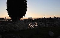 View across the ruins of Volubilis with a cypress tree and the arches of the portico silhouetted against the sky, Volubilis, Northern Morocco. Volubilis was founded in the 3rd century BC by the Phoenicians and was a Roman settlement from the 1st century AD. Volubilis was a thriving Roman olive growing town until 280 AD and was settled until the 11th century. The buildings were largely destroyed by an earthquake in the 18th century and have since been excavated and partly restored. Volubilis was listed as a UNESCO World Heritage Site in 1997. Picture by Manuel Cohen