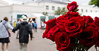 LOUISVILLE, KY - MAY 06: Roses on Kentucky Derby Day at Churchill Downs on May 6, 2017 in Louisville, Kentucky. (Photo by Scott Serio/Eclipse Sportswire/Getty Images)
