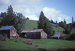 Barns in Anderson Valley, California