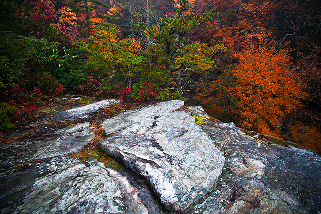 Autumn forest and ancient rock formation