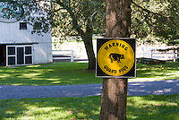 Farm barn with sign Warning Guard Pigs on tree trunk, funny humorous animals