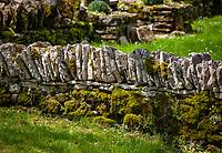 Frankreich, Bourgogne-Franche-Comté, Département Jura, bei Baume-les-Messieurs: Trockensteinmauer | France, Bourgogne-Franche-Comté, Département Jura, near Baume-les-Messieurs: dry stone wall