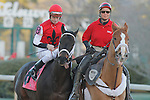 Ride On Curlin (KY) with jockey Calvin H. Borel aboard during post parade before the  running of the Southwest Stakes (Grade III) at Oaklawn Park in Hot Springs, Arkansas on February 17, 2014. (Credit Image: © Justin Manning/Eclipse/ZUMAPRESS.com)