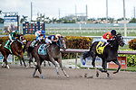 HALLANDALE BEACH, FL - JAN 06: Cicatrix #4 with Julien Leparoux in the irons outlasting the field on the way to winning The $75,000 Glitter Woman Stakes for trainer Ian R. Wilkes at Gulfstream Park on January 6, 2018 in Hallandale Beach, Florida. (Photo by Bob Aaron/Eclipse Sportswire/Getty Images)