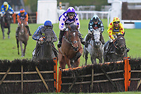 Winner of The John And Jean Taylor's Diamond Anniversary Handicap Hurdle Dan McGrue (m) ridden by Harry Cobden and trained by Paul Nicholls during Horse Racing at Plumpton Racecourse on 4th November 2019