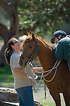 Professional horse trainer prepares for a trail ride with student/client and horses