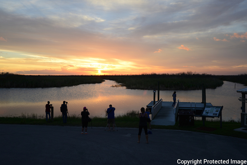 Evening brings many magnificent sunsets to the Everglades, and the photographers that photograph the sunsets. I chose to photograph the photographers photographing the sunset !