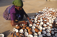 INDIEN Karnataka, Trocknung von Kokosnuessen in Sonne auf Plantage bei Mangalore, aus dem Kokosfleisch, Kopra, wird anschliessend Kokosoel gepresst / INDIA, woman drying coconut in sun at farm near Mangalore, from copra later coconut oil will be pressed